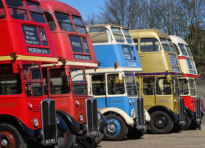 IMG 5229 