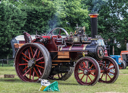 IMG 8524 