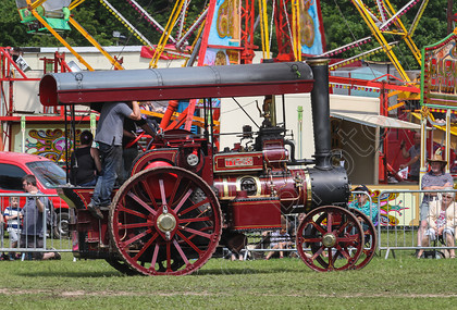IMG 7337 