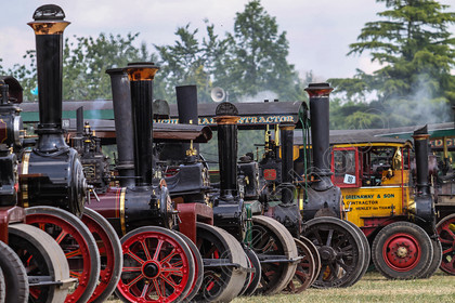 IMG 9078 