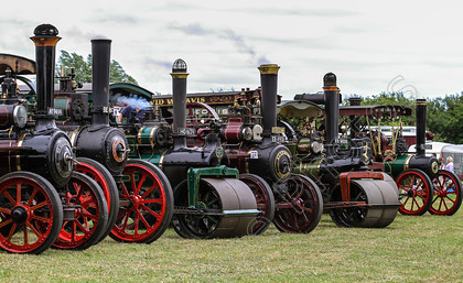 IMG 2245 