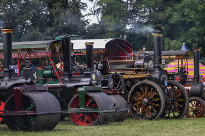 IMG 7708 