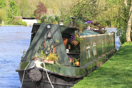 IMG 3614 