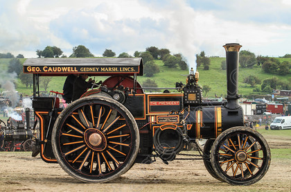 IMG 2361 