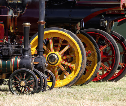 IMG 6616C 